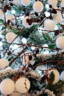 63874447628 Tänavune jõulupuu on jäiselt valge